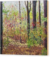 Sewp 7-05 Wood Print