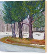 Sewp Early Spring Wood Print