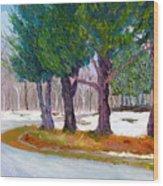 Sewp Spring Thaw Wood Print