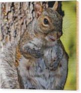 Sexy Squirrel Wood Print