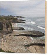 Seymour Marine Discovery Center Santa Cruz Wood Print