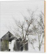 Shabby Barn Wood Print