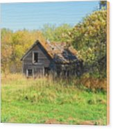 Shack In Fall Colours Wood Print