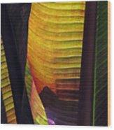 Shade Wood Print