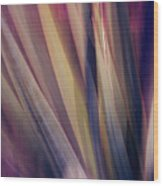 Shade Of Color Wood Print