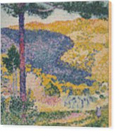 Shade On The Mountain Wood Print