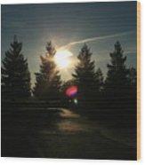 Shade Tree Flare Wood Print