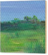 Shaded Meadow Wood Print