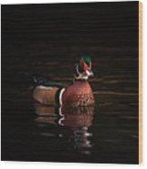 Shaded Wood Duck Wood Print