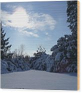 Shades Of Blue In Winter Wood Print