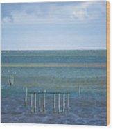 Shades Of Blue On The Horizon Wood Print
