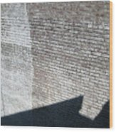 Shadow Brick Wood Print