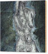 Shadow In Nude Wood Print