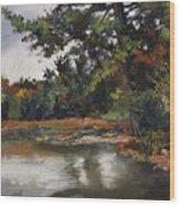 Shadow Lake Plein Air #3 Wood Print