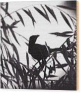 Shadow Of The Crow Wood Print