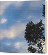 Shadow On Softness Wood Print