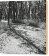 Shadow Path Wood Print