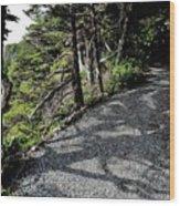 Shadow Path Wood Print