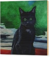 Shadow The Cat Wood Print