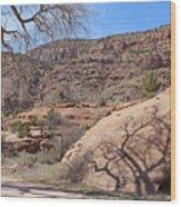 Shadow Tree Dominguez-escalante Canyon Colorado Wood Print