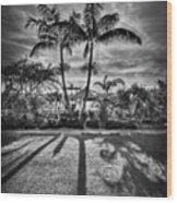 Shadow Waltz Wood Print by Evelina Kremsdorf