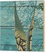 Shadowed Agave Wood Print