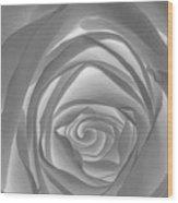 Shadowless Rose - 26789 Wood Print