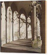 Shadows And Curves Wood Print