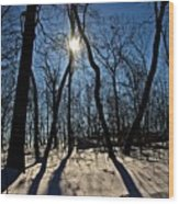 Shadows And Silhouettes Wood Print