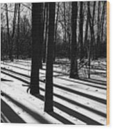 Shadows And Tracks Wood Print