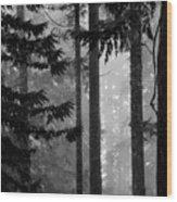 Shadows  Wood Print