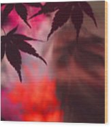 Shadows Depart Wood Print