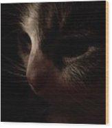 Shadows Of A Cat Wood Print