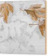 Shadows Of Fall Wood Print