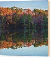 Shadows Of Reflection Wood Print