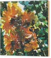Shadows Of Sunflowers Wood Print