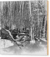 Shadows Of Winter Wood Print