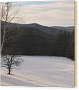 Shadows On A Snow Covered Field Wood Print