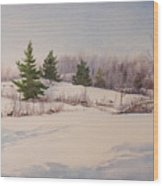 Shadows on Snow in the Canadian Shield  Wood Print