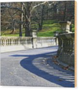 Shadows On The Bridge Wood Print