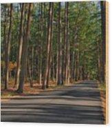 Shadows Road - Ocean County Park Wood Print