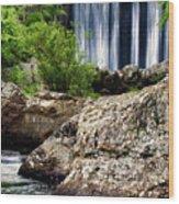 Shady Lake Falls Wood Print by Lana Trussell