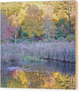 Shady Pond Wood Print