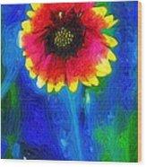 Shaggy Moon For A Shaggy Flower Wood Print