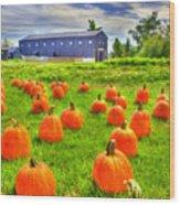 Shaker Pumpkin Harvest Wood Print