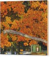 Shaker Sorghum Mill 2 Wood Print