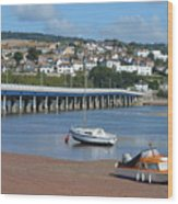 Shaldon Bridge Wood Print