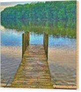 Shallow Water Wood Print