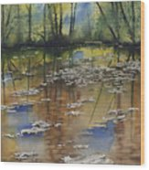 Shallow Water Wood Print by Sam Sidders