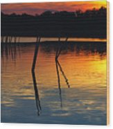 Shallow Water Sunset Wood Print